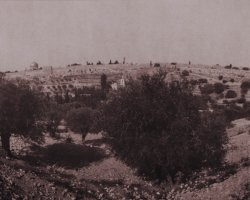 1225 - View from Gethsemane