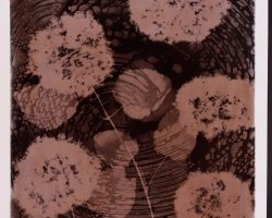 0974 - Black flowers in brown - Negative image