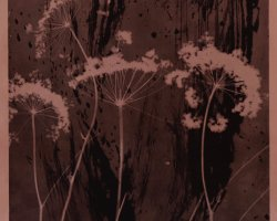0989 - High vegetation  - Negative image in brown