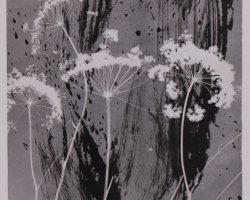 0996 - High vegetation  - Negative image