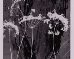 0998 - High vegetation  - Negative image
